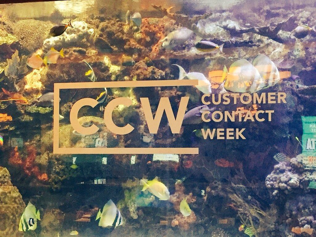 Customer Contact Week 2018