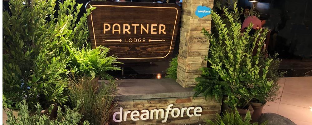 Salesforce_partner